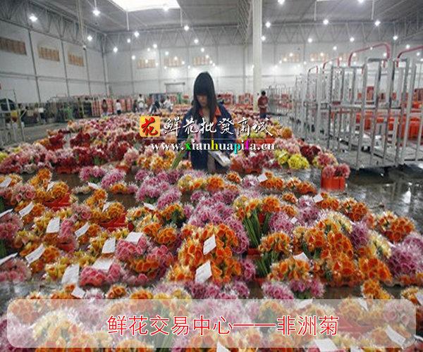 鲜花拍卖中心